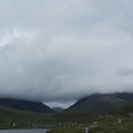 Quite typical view on Harris