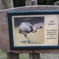 Zoo 26.10.2014 0007